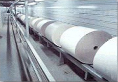 Roll Conveyor Chain
